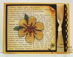 Vellum flower fancy